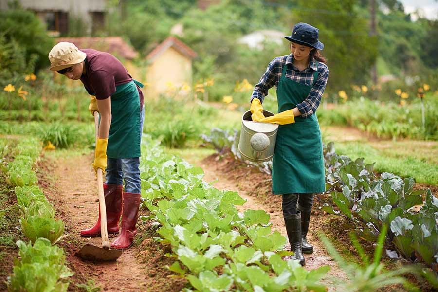A-farmer-Community-helper